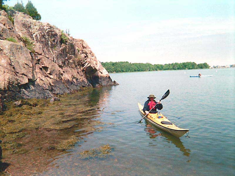 kayaking hingham harbor wild turkey paddlers