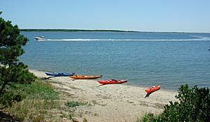 Waquoit Bay